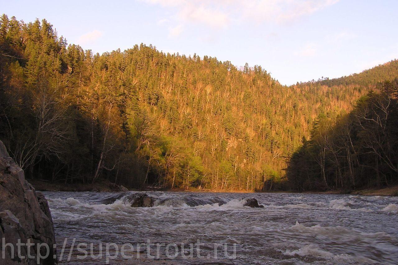 река великая псковская область рыбалка